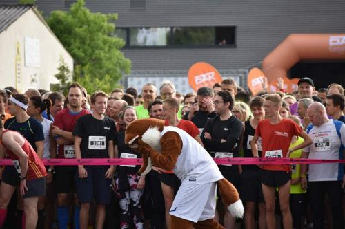 Sportevent in Jena 2019